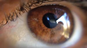 """""""Como eu veria o mundo se estivesse com seus olhos?"""" Esse foi o argumento de uma das pílulas audiovisuais."""